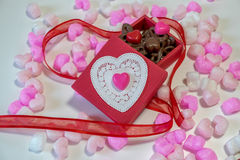 Heart shaped chocolates in a gift box Stock Image