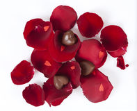 Heart shaped chocolates in rose petals Royalty Free Stock Photo