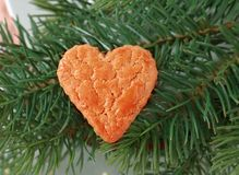 Heart shaped cookie Stock Photography