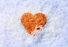 Heart shaped cookie in snow Royalty Free Stock Photography