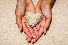 Heart shaped coral in hands, Boracay Island, Philippines Stock Image