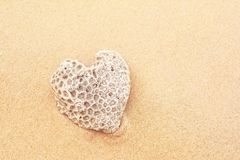 Heart shaped coral Stock Photo