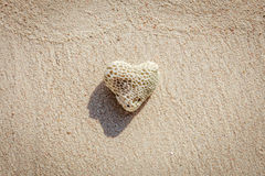 Heart shaped coral on sand, Boracay Island, Philippines Stock Images