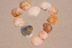 Heart Shaped Design With Seashells Stock Photos