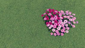 Heart-shaped flower-garden among a green grass 2 Royalty Free Stock Image