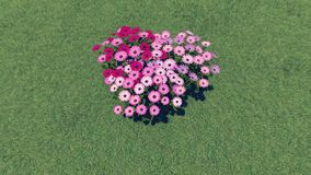 Heart-shaped flower-garden among a green grass 1 Royalty Free Stock Images