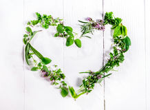 Heart shaped frame of fresh culinary herbs. Heart shaped frame of assorted sprigs of fresh green culinary herbs arranged on a rustic white wooden background stock photos