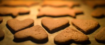 Heart shaped gingerbread cookies royalty free stock photography