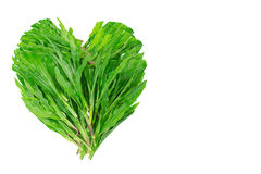 Heart shaped green grass leaves on white background, green na Stock Images