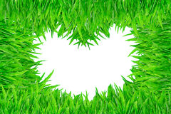 Heart shaped green grass on white background Stock Photo