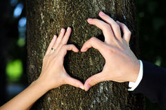 Heart Shaped Hands Royalty Free Stock Photos