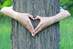 Heart shaped hands Stock Images