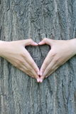 Heart shaped hands Stock Photography