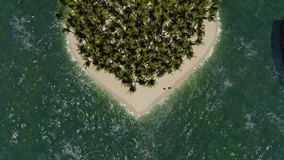 Heart shaped island with palm stock video footage