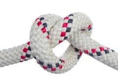 Heart-shaped knot. Stock Image