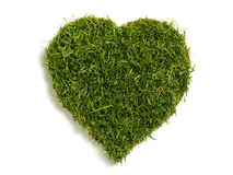 Heart shaped lawn sod. Lawn sod in heart shape, isolated on white royalty free stock photography