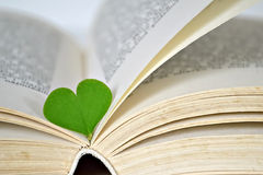 Heart shaped leaf and book Stock Photos