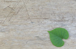 Heart-shaped leaves on wood Stock Images