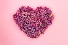 Heart shaped lilac flowers on pink background. Love symbol. Top view. royalty free stock photography