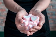 Heart shaped marshmallow in the hands of the girl.  Stock Photos