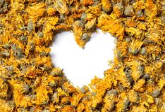Heart shaped from medicinal flowers of a calendula. On white background. Herbal tea. Top view. Close up. High resolution Royalty Free Stock Images