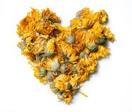 Heart shaped from medicinal flowers of a calendula isolated on white background. Herbal tea. Top view. Close up. High resolution Royalty Free Stock Photo