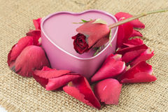 Heart shaped metal box with a red rose is placed on sackcloth. Heart shaped metal box with a rose is placed on sackcloth Royalty Free Stock Photo