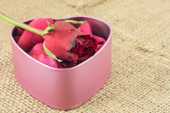 Heart shaped metal box on sackcloth. Heart shaped metal box put inside with red rose petals sent to the sweetheart on sackcloth Royalty Free Stock Photo
