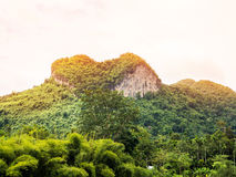 Heart-shaped mountain. In the middle of forests, south of Thailand Stock Images
