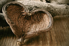 Heart-shaped nut shell and logs Stock Images