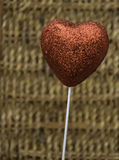Heart shaped ornament. Standing in front of a heart-shaped decorative wire mesh Royalty Free Stock Photos