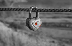 Heart shaped padlock on metal cable in black and white. Royalty Free Stock Photography