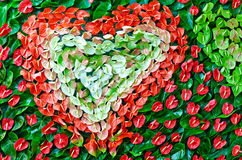 Heart-shaped pattern of colored leaves Royalty Free Stock Images