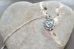 Heart shaped paua shell necklace Stock Image
