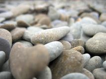 Heart-shaped pebble Stock Photography