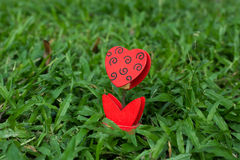 Heart-shaped photo holder on the green grass Royalty Free Stock Images