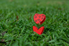 Heart-shaped photo holder on the green grass Stock Photos