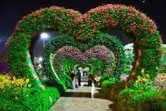 Heart-shaped Pink and Purple Flower Garden stock images