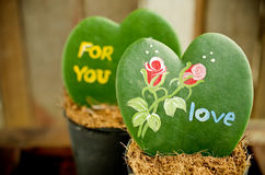 Heart shaped plant (Kerrii Hoya). With painted roses and message of love in pot. Valentines day theme royalty free stock photography
