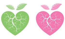 Heart shaped plants Stock Image