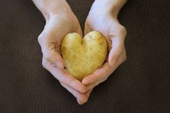 Heart shaped potato stock photo