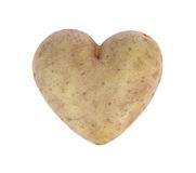Heart shaped potato spud, studio shot Royalty Free Stock Photography