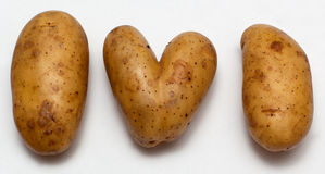 Heart shaped potatoe Stock Photography