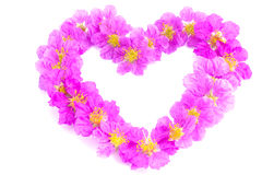 Heart shaped purple flowers on white background Royalty Free Stock Images