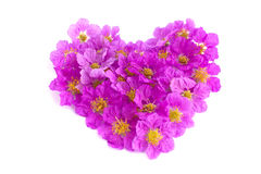 Heart shaped purple flowers on white background Royalty Free Stock Photos