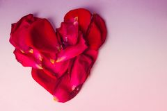 Heart of rose petals stock photo