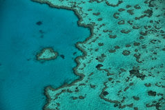 Heart Shaped Reef. The coral reef in the shape of a heart in the world most famous in the archipelago of the Whitsunday Island Royalty Free Stock Photo