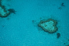 Heart shaped reef in the great barrier reef Stock Image