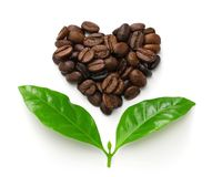 Heart shaped roasted coffee beans and leaves, fair trade concept image stock photos