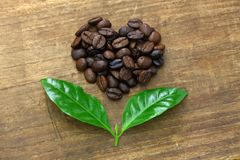 Heart shaped roasted coffee beans and leaves stock image